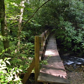 You must cross the wooden bridge to get to Courthouse Falls.