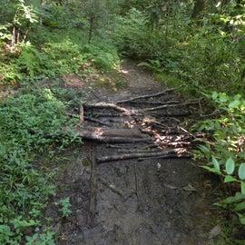 The trail got a little mucky.