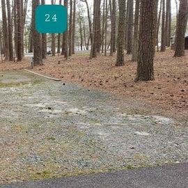 Pocomoke River Milburn Site 24
