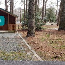 Pocomoke River Milburn Landing Site 28 - cabin