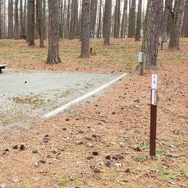 Pocomoke River Milburn Landing Site 14