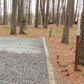 Pocomoke River Milburn Landing Site 13