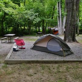 Set up at Campsite 8