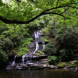 Tom Branch Falls (which is walking distance from the campground)