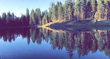 Trout Lakes
