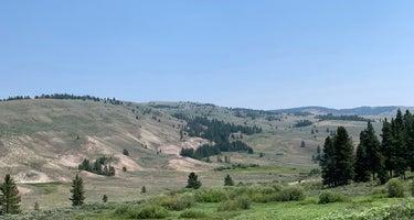 Cutler-Gallitan National Forest
