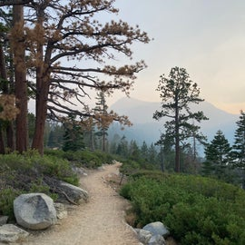 view from lookout trail in campground