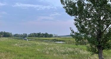 Mouse River Park