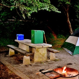 "Adequate space, picnic tables, and fire pits make the campsites feel like ""camping home."""