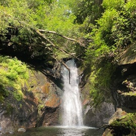 2 minute drive to courthouse falls