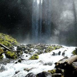 Tamawanas Falls meadow