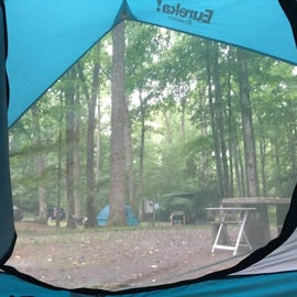 B29 campsite – good distance away from other sites! Nicely wooded and very shady