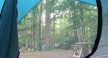 Julian Price Campground