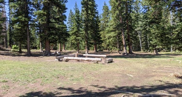 Iron Springs Group Campground - Ashley National Forest