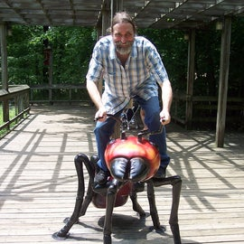 Fire ant ride