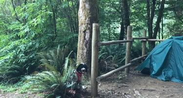 Tillamook State Forest Keenig Creek Campground