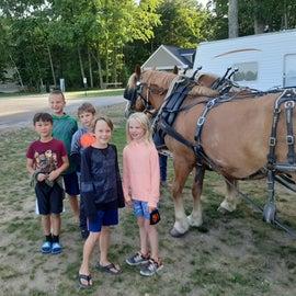 Evening wagon ride