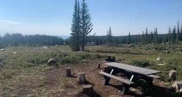 Nash Fork Campground - Medicine Bow-Routt National Forests & Thunder Basin National Grassland