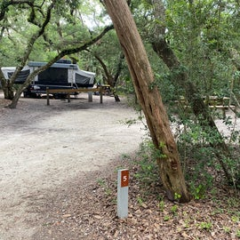 We were in a mixed tent and RV camping 'neighborhood'