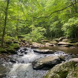 Creek on Boone Fork Trail