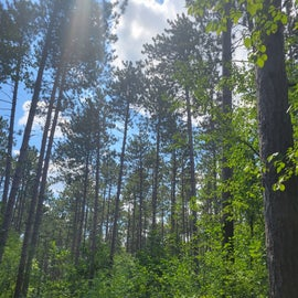Scuppernong Trail