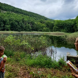 Wildlife Lake Trail