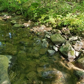 Creek behind our campsite