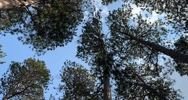 Bear Paw Campground