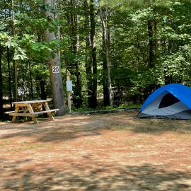 Space # 20 at Desert of Maine campground