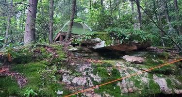 New River Gorge Adventure Center
