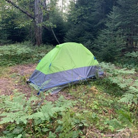 I pitched my tent at the clearing to the right