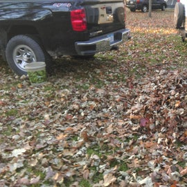Primitive campground (pile of leaves for my 10 year old daughter to jump into)