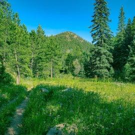 squirrel creek trail
