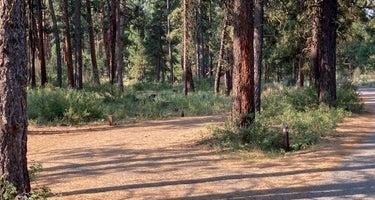 Malheur National Forest Idlewild Campground