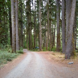 The road into the campground