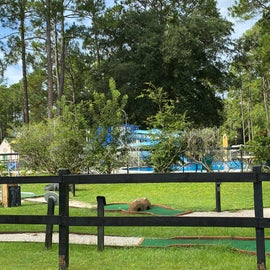 View of the pool and mini golf course from the road