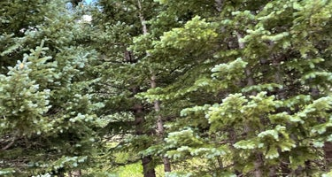 Blue Lake Campground - San Isabel Nf (co)