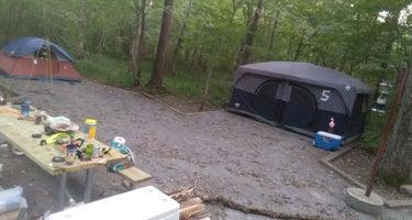 Elizabeth Furnace Group Camp