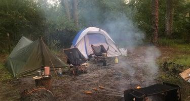 Wharton State Forest Goshen Pond Campground