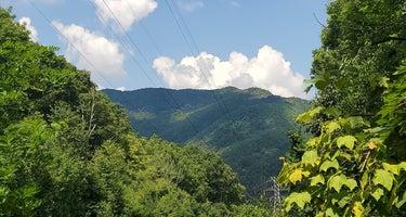 Avery Creek Roadside Camping