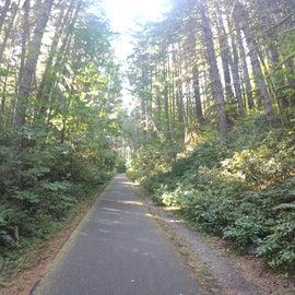 Banks/Vernonia 25 mile bike path