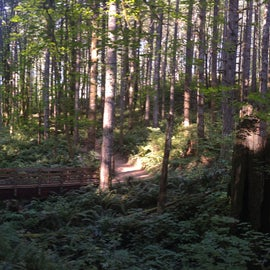 35 miles of varied hiking trails