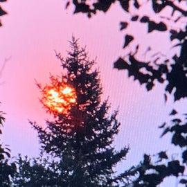 Smokey Morning Sunrise