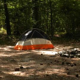 Set up at Campsite 5
