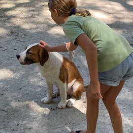 And Bailey the Beagle was a very gentle friend
