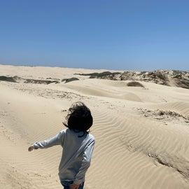 windy dunes