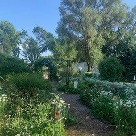 Garden walk that smells so nice!