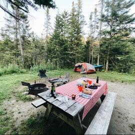 Campsite #84