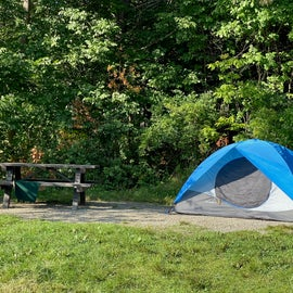Tent at site # 57 Lamoine  State Park. Site faces the bay directly.