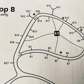 Seawall Campground - Loop B - NPS map